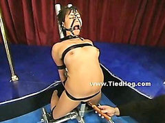 Bound, With mouth, Sluty, Bounded, Bound and, Bounding