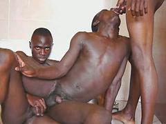 African, Sauna, In bar, Sex sauna, Sex in sauna, Saunas