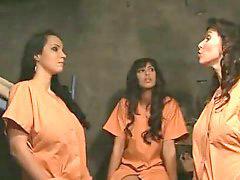 سجون,, السجن, وش سجون, سكس كبير الثدي حار, سكس سكس ساخنة, سكس سجين