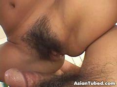Amater, Azijski, Amateri