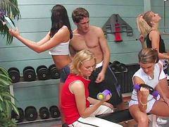 Orgy, Gym
