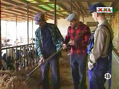 المزارع, في المزراع, ف المزرعة, مزارع, مزرعة, المزرعه