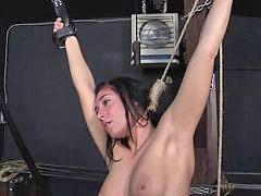 노예체벌, 노예{, 처벌노예, 여노예체벌, 간병, 노예