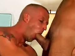 ตำรวจเกย์, ดาคา, เกย์เย็ดกัน, เย็ดตูดใหญ่, เอาตูดเกย์, เย็ดตูดเกย์