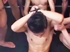 Japanese, Asian gay, Japanese amateur, Japanese groups, Gay horny, Gay asians