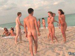 Orgy, Beach, Hotel