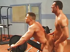 ควยเกย์, เกย์ควย, เกย์เย็ดกัน, เกย์ควยใหญ่, เgay กล้าม, เกย์ ควยใหญ่