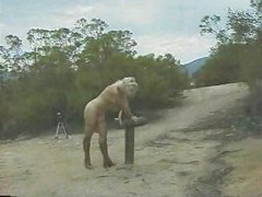 Horse, She rides, Riding horse, Punishment horse, Horse ride, Horse f