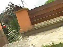 Gardeneer, Gard, Garden